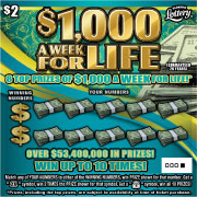 $1,000 A WK FOR LIFE