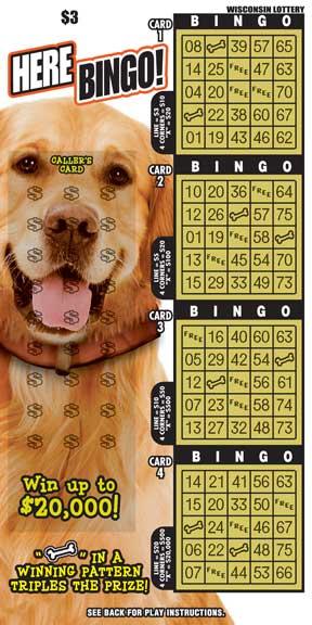 Here Bingo!